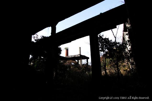 2009-12-26-403.jpg