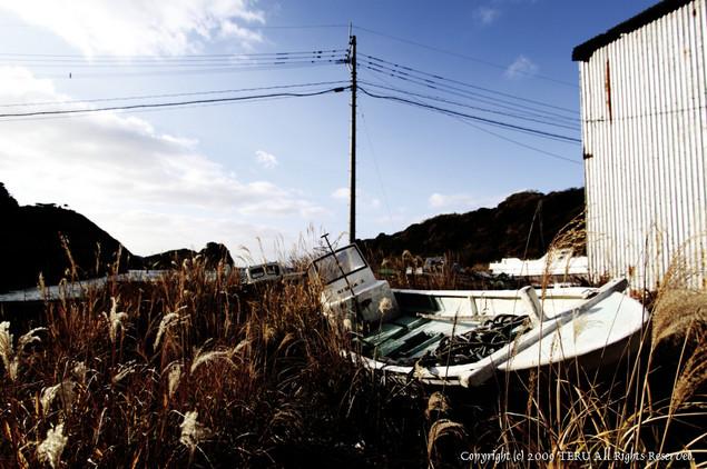 2009-12-26-901.jpg