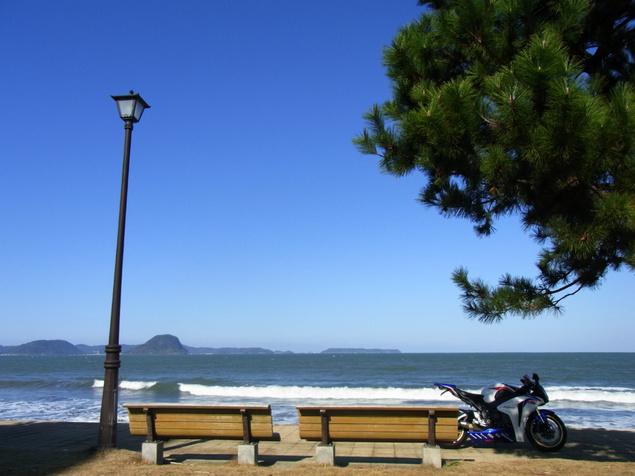 2010-01-03-008.jpg